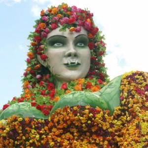 http://www.guiatodo.com.co/galeria/medellin/madre_monte_cuentos_y_leyendas/0